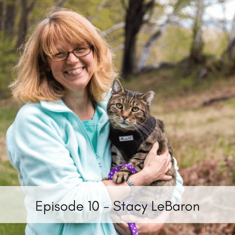 Episode 10 – Stacy LeBaron, Community Cats Podcast