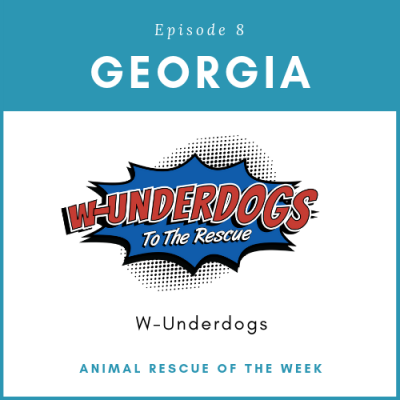 Animal Rescue of the Week: Episode 8 – W-Underdogs in Georgia
